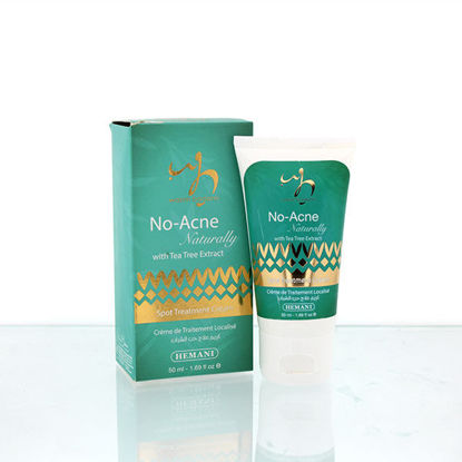 wb by hemani no acne naturally with antibacterial tea tree oil face cream for spot treatment