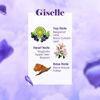 WB by Hemani Giselle Mini Perfume Notes